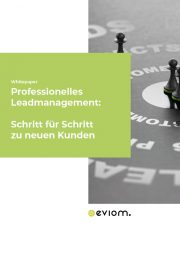 Titelbild Whitepaper Leadmanagement