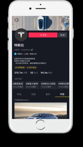 TikTok Marketing Tesla
